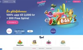 www.casinojoy.com